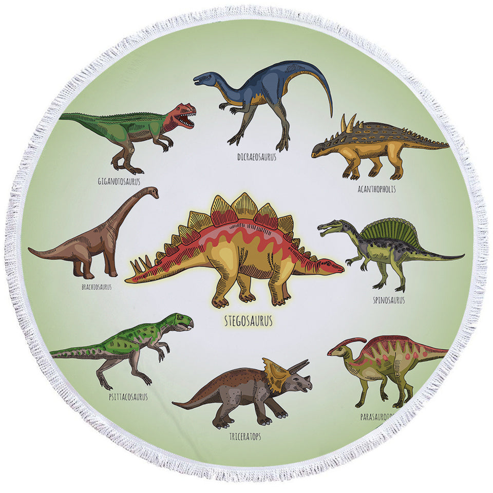 Dinosaur Almanac Round Beach Towel Set - Beddingify