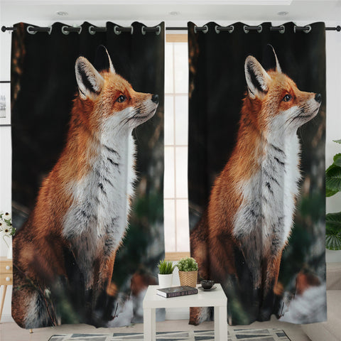 3D Fox Black 2 Panel Curtains