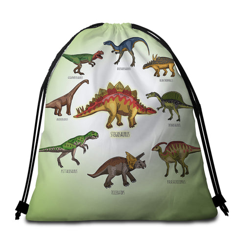 Image of Dinosaur Almanac Round Beach Towel Set - Beddingify