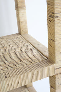 Shelf Palms Rattan