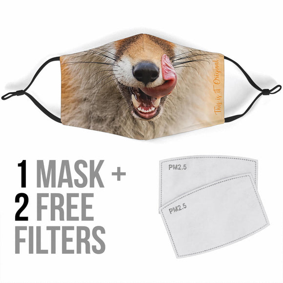 Lucky Fox Original Mouth Protection Face Mask