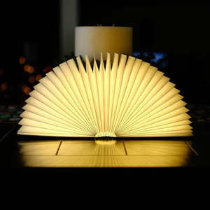 KOOP EEN BUY AURORA LAMP AWARDED FOR DESIGN - PRODUCT OF THE YEAR WITH FREE SHIPPING WORLDWIDE