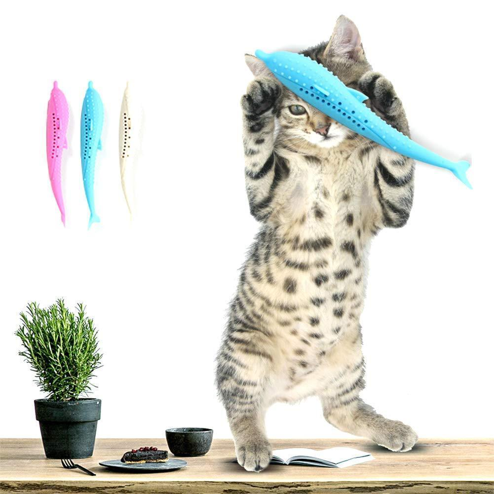 BUY MORE SAVE MORE !!- Nepeta cataria Toothbrush