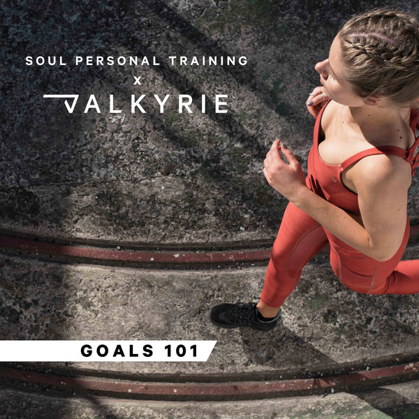 Soul x Valkyrie: Goals 101 Workshop