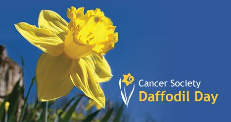 Daffodil Day - Cancer Society