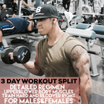3 DAY SPLIT (UPPER BODY AND LOWER BODY WORKOUT PLAN)