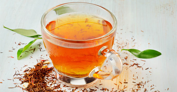 Rooibos to help Prevent disease