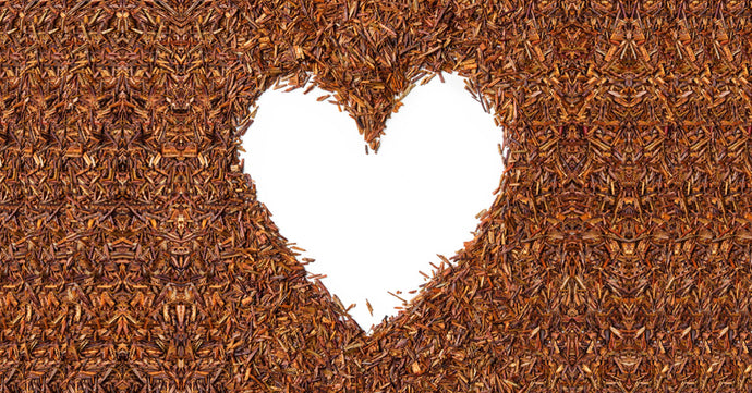 Scientists concur: Rooibos potential to curb heart disease undeniable