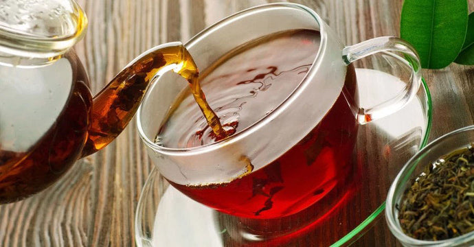 Rooibos 101: Surprising Things You Might Not Know About This National Treasure