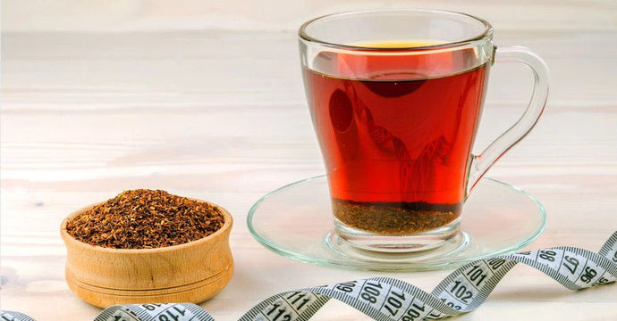 Study Investigating Rooibos' Weight-Loss Effect Currently Underway