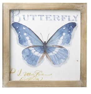 Blue & White Butterfly Picture