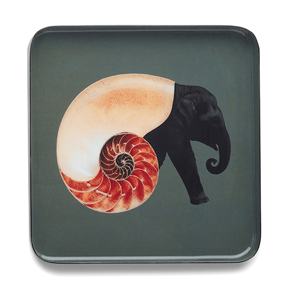 Square Trinket Tray - Shellephant