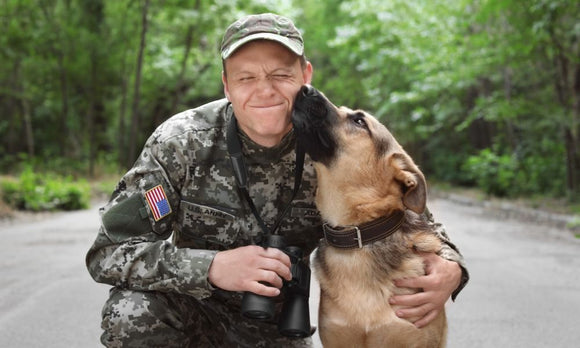 How Does K-9s for Warriors Support Veterans?