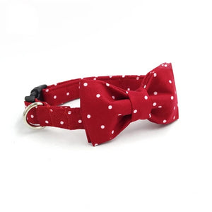 Red And White French Bulldog Collar And Leash Set With Bow Tie