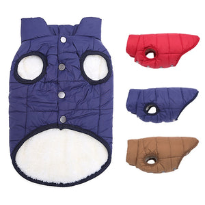 French Bulldog Warm Fleece Jacket (three color options)