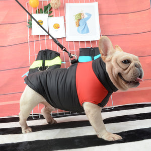 Waterproof French Bulldog Jacket With Zip (four color options)