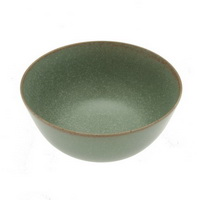 Terra Green soup/cereal bowl