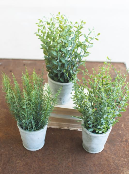 Faux Herbs in Concrete Planters
