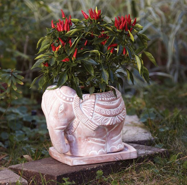 Terra-Cotta Elephant Planter