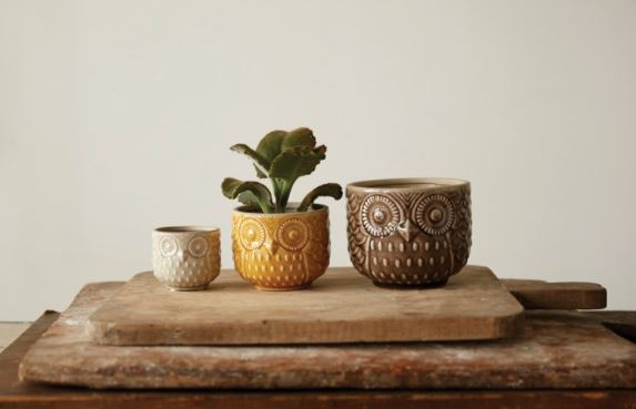 Stoneware Owl Pots - 3 Sizes