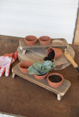 Three Terracotta Flower Pots on a Recycled Wooden Base