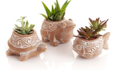 Pond Critter Terra Cotta Planters - 3 Styles
