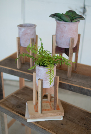 White Washed Clay Flower Pots on Recycled Wood Stands