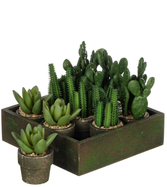 9 Potted Faux Cactus in Black Wood Box