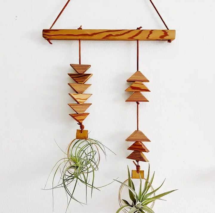 Double Dunes Air Plant Wall Hanging