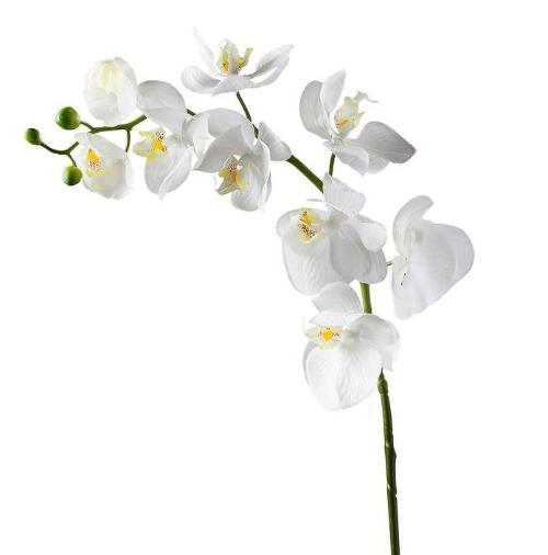 Orchid Faux Single Stem