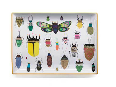 Insect Trinket Dish