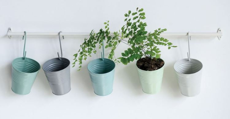 Set of 5 Hanging Pots with Rod