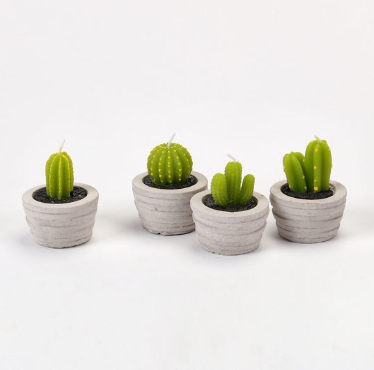 Set of 4 Cacti TeaLight Candles