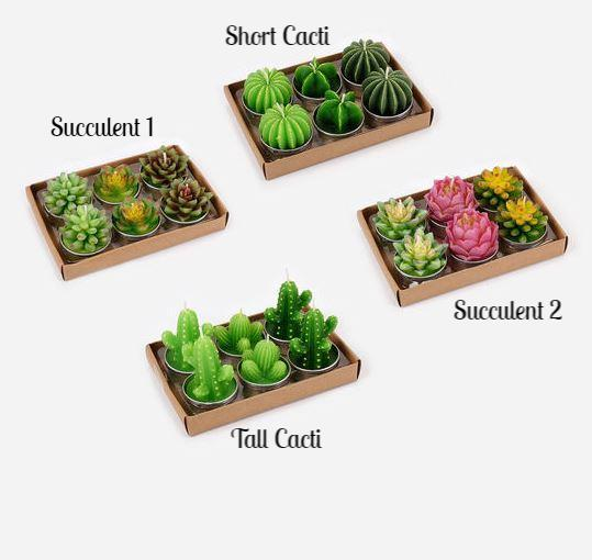 Set of 6 Succulent/Cacti TeaLight Candles - 4 Varieties