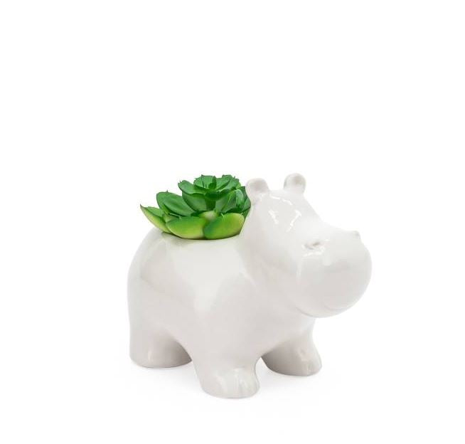 Animal Garden Ceramic Potted Faux Succulent - 4 Styles