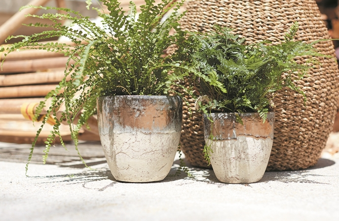 Muriel Pot - 3 Sizes