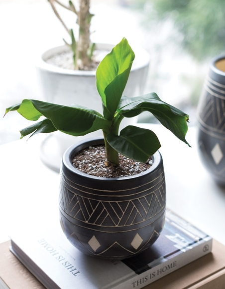 Bamba Pot - 2 Sizes