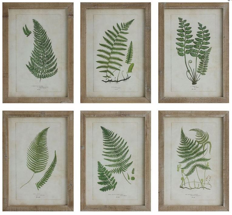 Set of 6 Wood Framed Wall Decor with Ferns