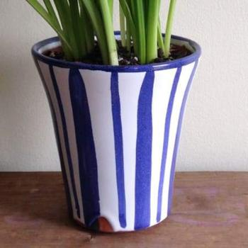 "Blue & White Long Tom Planter 5.75"" x 5.5"""