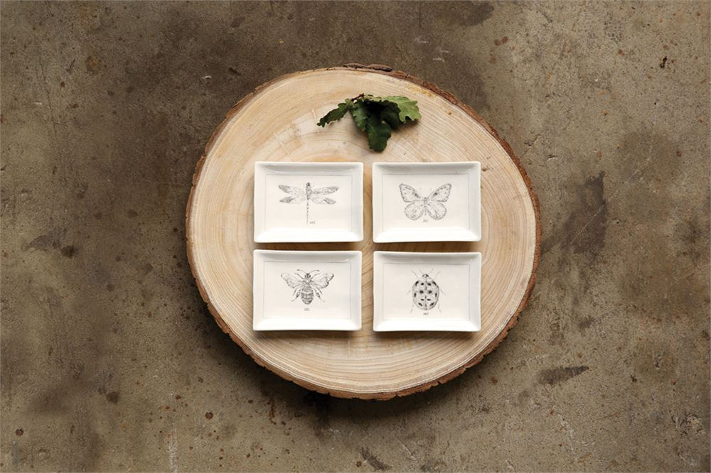 Insect Dishes - 4 Styles