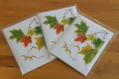 Sugar Maple Stationery Gift Cards