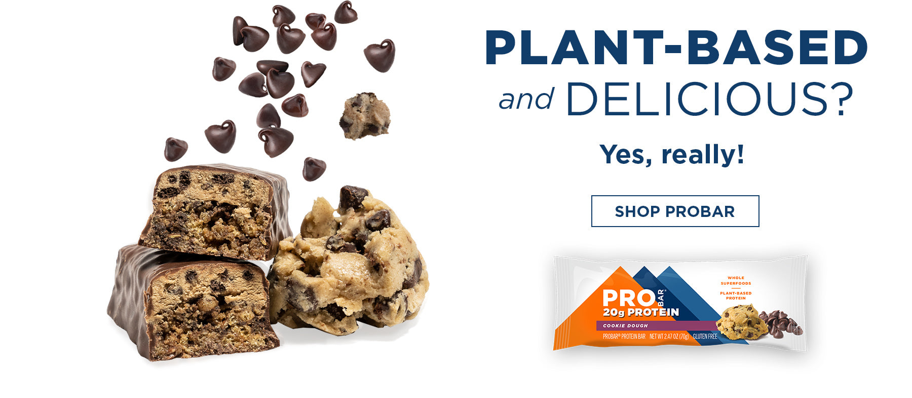 Delicious Meal Replacement Bars Plant Based Non-GMO Gluten Free