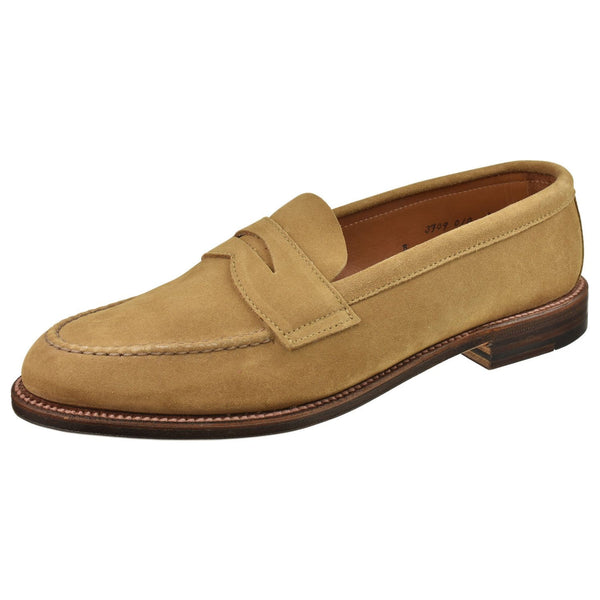 Alden Shoes Alden Mens Penny Suede 6244F