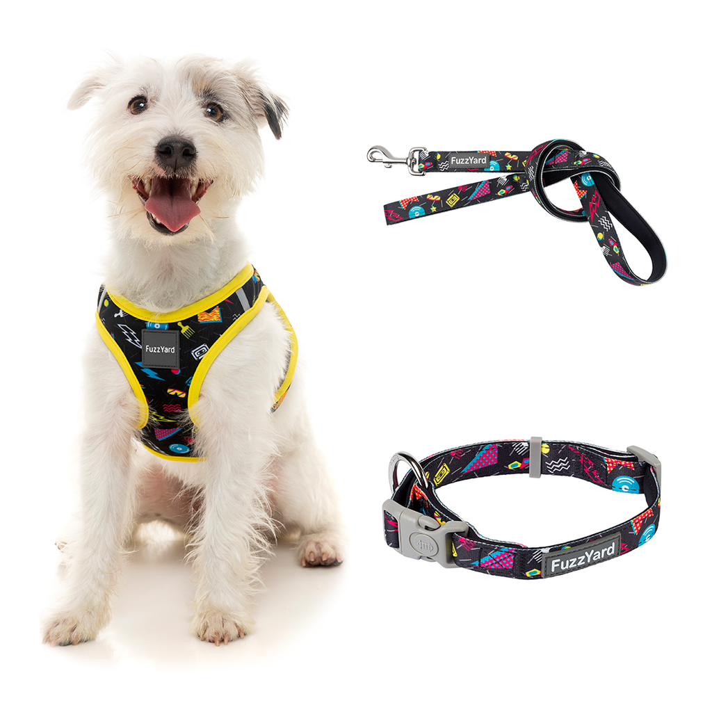 Bell Air Bundle Harness + Lead + Collar