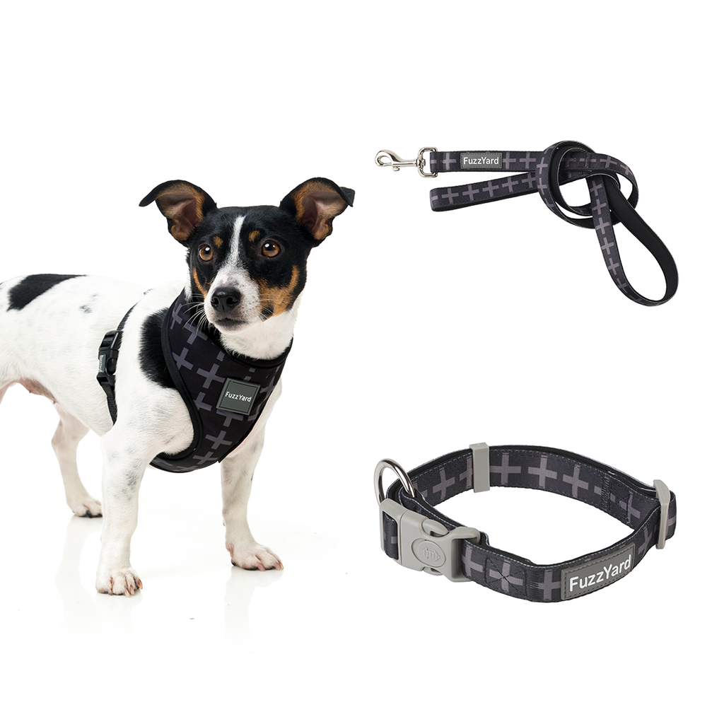 Yeezy Bundle Harness + Lead + Collar