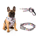 Fresh Cupcakes Bundle Harness + Lead + Collar