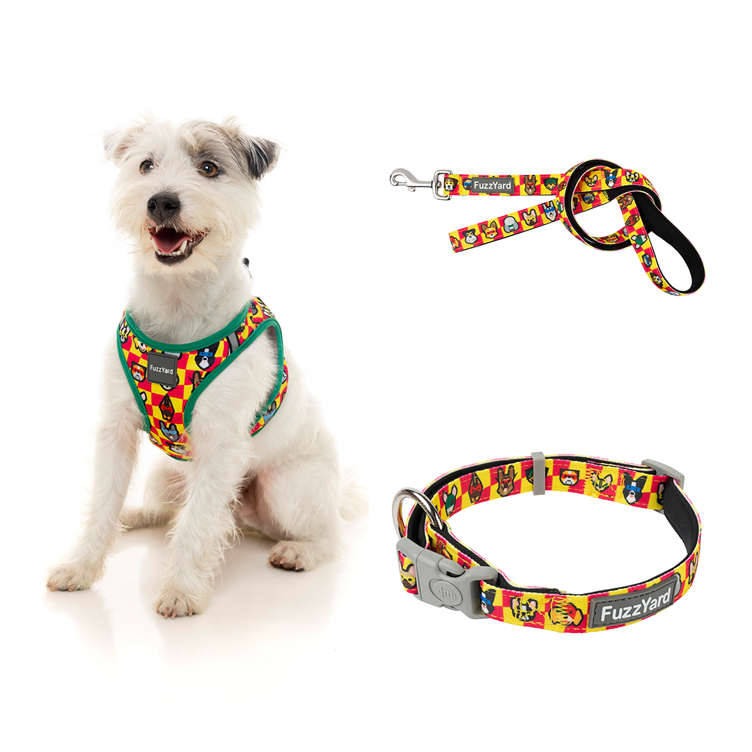 Doggoforce Bundle Harness + Lead + Collar