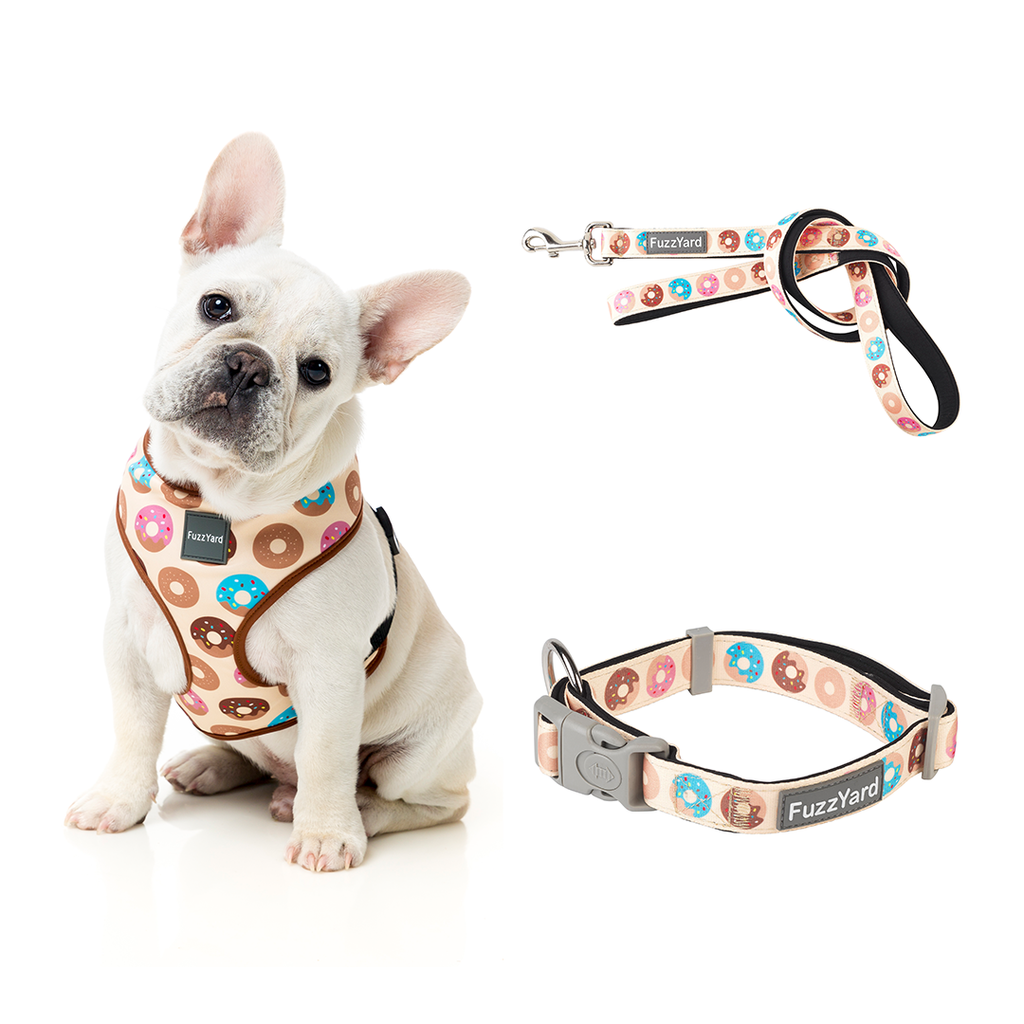 Go nuts Bundle Harness + Lead + Collar