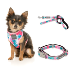 Lahania Bundle Harness + Lead + Collar