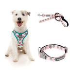 Cool Jaws Bundle Harness + Lead + Collar